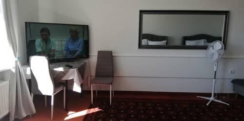 Hotel Piast Roman - фото 9