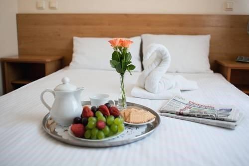 Hotel Wiktoria - фото 6