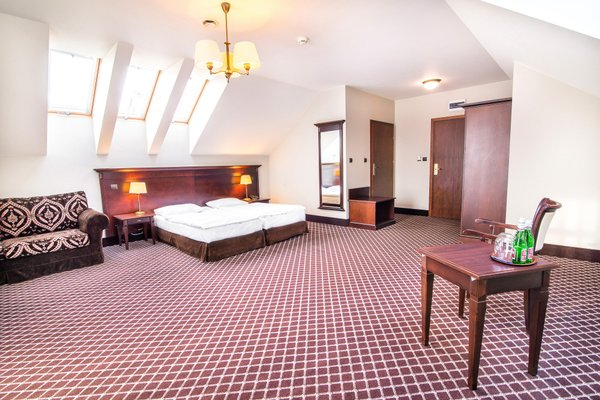 Hotel Wilenski - фото 1