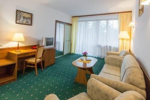 Hotel Tatry - фото 3