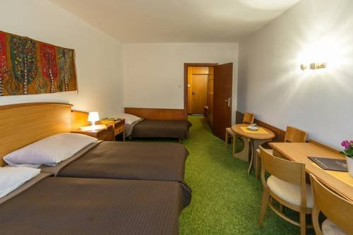 Hotel Tatry - фото 5