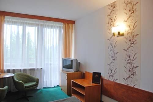 Hotel Tatry - фото 7