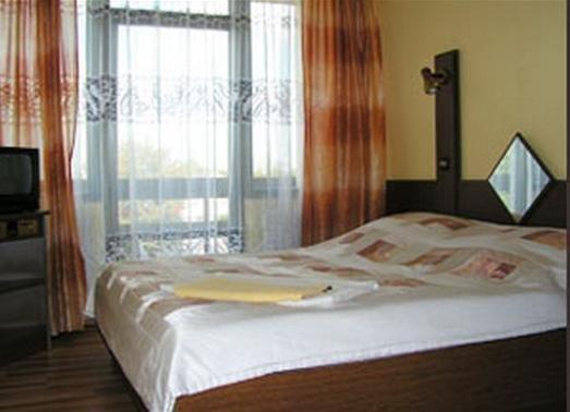 Hotel Krapkowice - фото 1