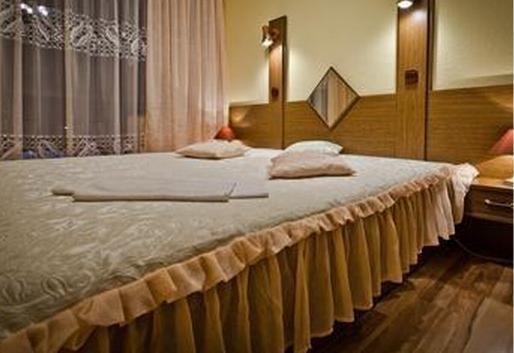 Hotel Krapkowice - фото 4