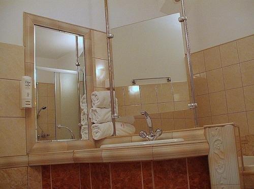 Hotel Regius - фото 9