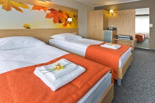 Hotel Lesny - фото 4