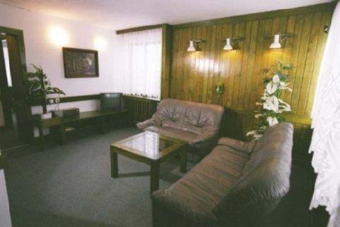 Hotel Lesny - фото 6