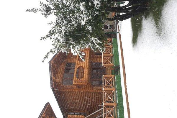 Viktoria Mini-hotel - фото 22
