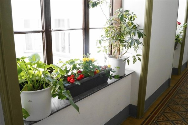 Appartement Pfaffenberger - фото 2