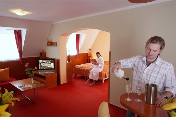 Wellness Hotel Diana - фото 2