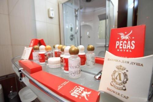 Отель Пегас - фото 14