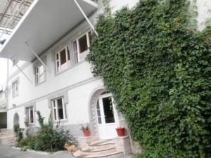 Гостевой дом «Флорин», Иноземцево
