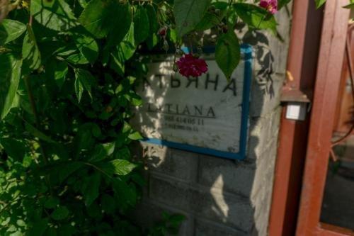 Татьяна - фото 13