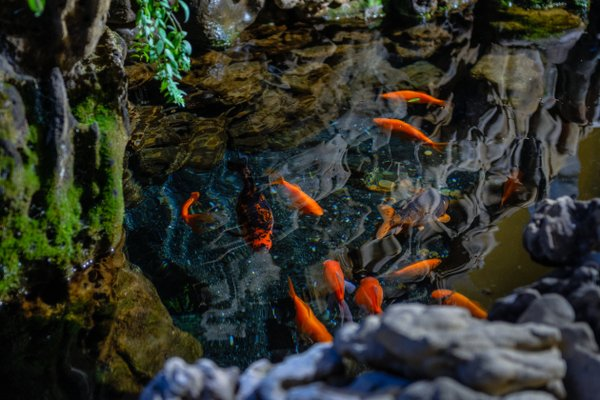 Гостиница Эдэран - фото 6
