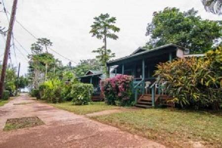 Photo of Backpackers Vacation Inn and Plantation Village
