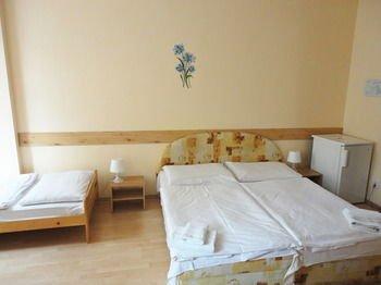 Hotel Jizera - фото 4