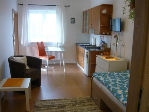 Penzion Lena - фото 13