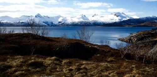 Vestfjord Service Villa - фото 13