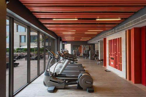 Holiday Inn New Delhi International Airport - фото 20