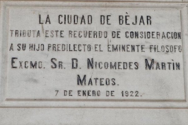 Don Nicomedes Martin Mateos - фото 9