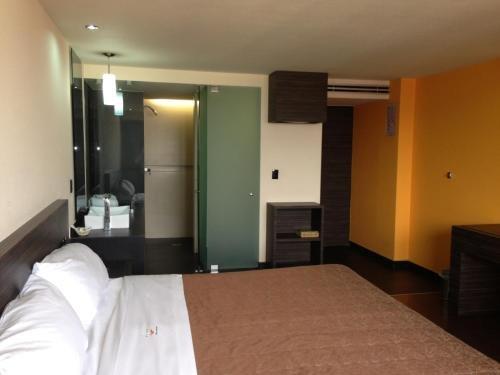 Hotel Amazonas - фото 1