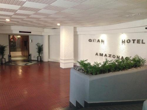 Hotel Amazonas - фото 11