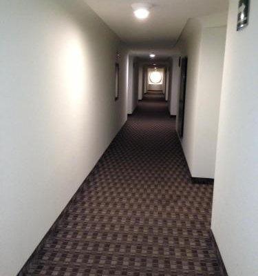 Hotel Amazonas - фото 14