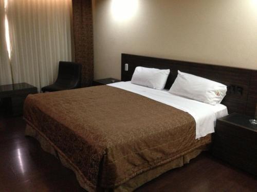 Hotel Amazonas - фото 2