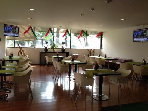 Hotel Amazonas - фото 8
