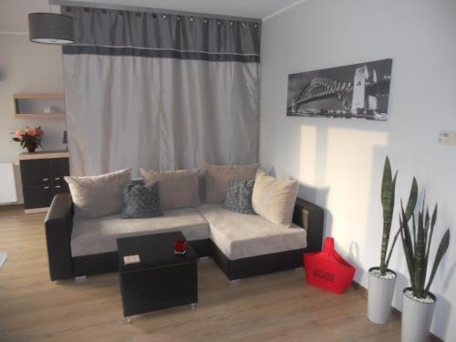 Apartament-Studio - фото 4
