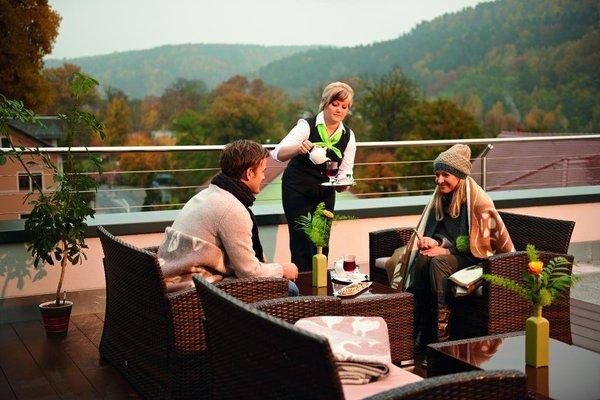 Hotel Lindenhof Bad Schandau - фото 18