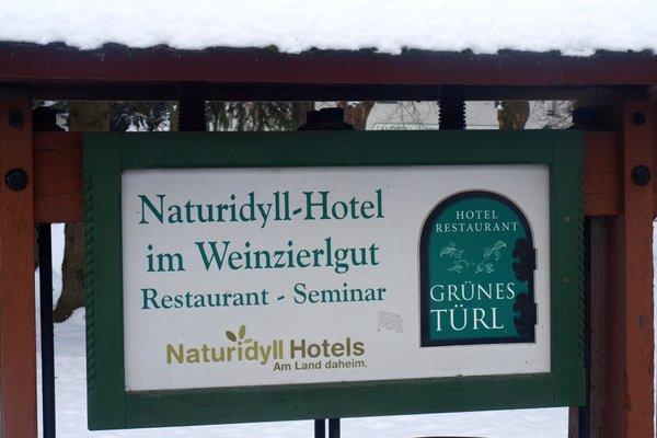 Hotel Grunes Turl - фото 18