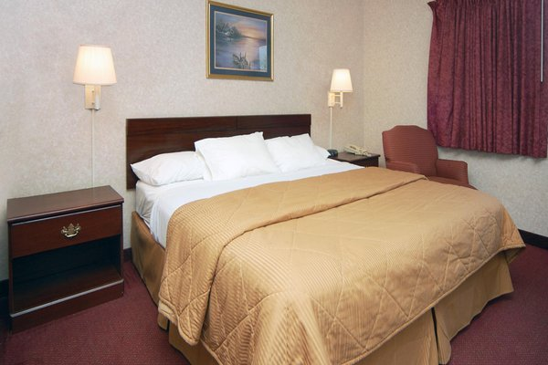Comfort Suites Downtown Windsor - фото 3