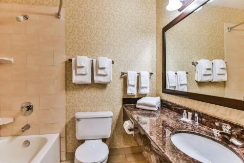 Comfort Inn & Suites Ambassador Bridge - фото 5