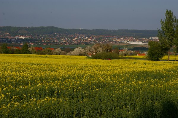 Landhaus Hempel - фото 18
