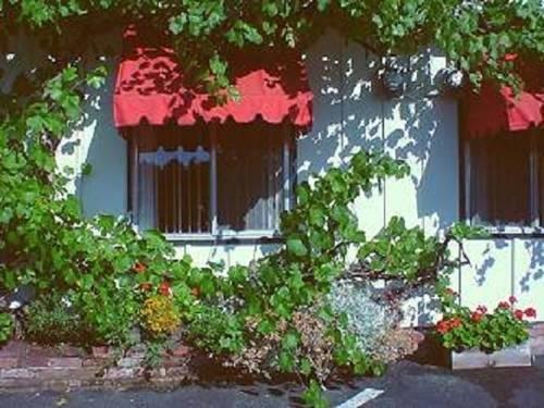 Cherry Tree Inn - фото 23