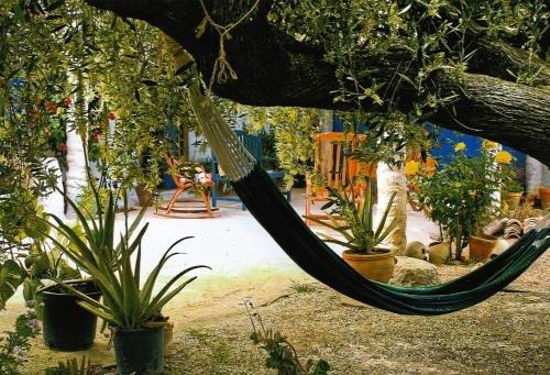 Casa Rural Aloe Vera - фото 18