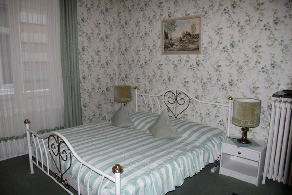 Hotel-Fink - фото 5