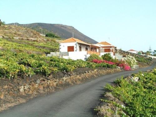 Casa Las Vinas - фото 23