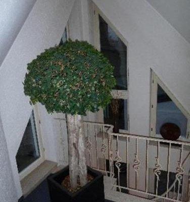 Hotel Zur Krone - фото 19