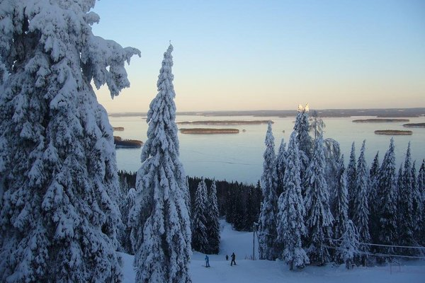 Aalto Koli - фото 17