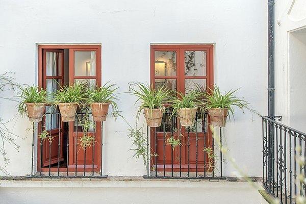 Hotel Las Casas de la Juderia - фото 17