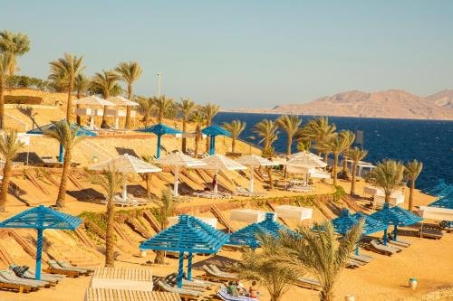 Grand Oasis Resort - фото 16