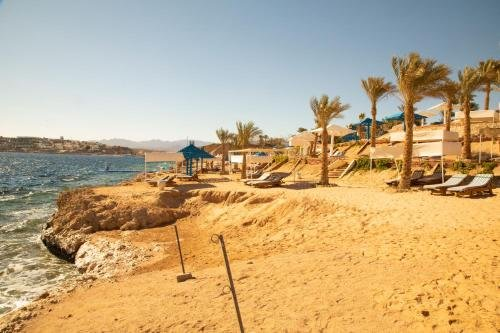 Grand Oasis Resort - фото 19