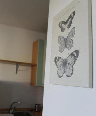 Residence Barcarola - фото 16
