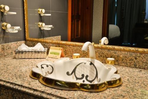 Hotel Plaza Del Libertador - фото 19