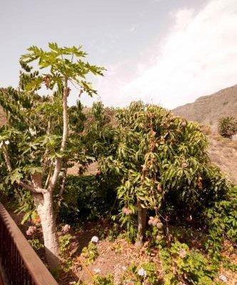 Casas Rurales Las Nuevitas - фото 16