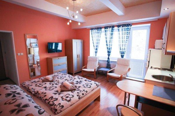 Ubytovani v Brne - фото 2