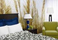 Отзывы Hotel Indigo Ottawa Downtown Parliament Hill, 4 звезды