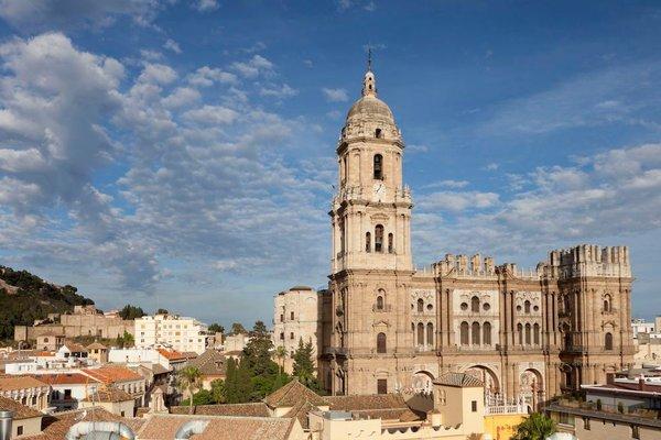 Petit Palace Plaza Malaga - фото 22